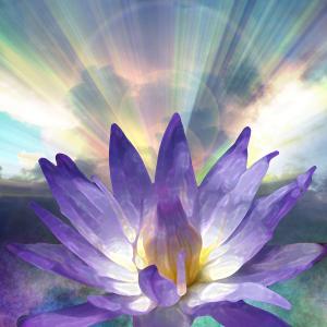 spring lotus